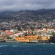 Stock Photo: Funchal