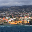 Funchal — Stock Photo #1987942