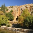 Banias - Stock Photo