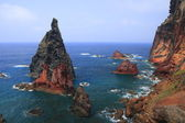 Ponta do Sao Lourenco — Stock Photo
