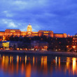 The Budapest Castle — Stock Photo #1990938