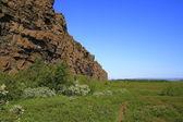 Asbyrgi kanyonu — Stok fotoğraf