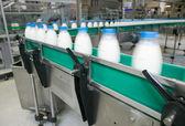 Dairy Plant. — Stock Photo