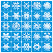 Super natural snowflakes — Grafika wektorowa