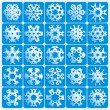 Super natural snowflakes — Vettoriale Stock #2031877