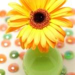 Постер, плакат: Flower vase