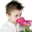 Boy and roses — Stock Photo #2620446