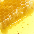 Foto Stock: Honeycomb detail
