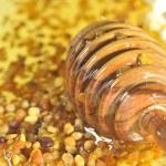 Honey and pollen — Stock Photo