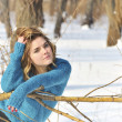 Girl portrait and winter scene — Stock Photo #2103802