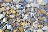 Stenar och is — Stockfoto