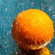 Fresh orange — Stock Photo #2186366