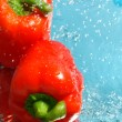 Two fresh peppers in water — Foto de Stock   #2188528