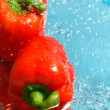 Two fresh peppers in water — Stock Photo