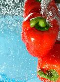 辣椒水流动 — 图库照片