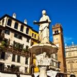 Постер, плакат: Piazza dante Verona