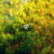 Stock Photo: Soap bubble over blurred background