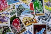 World stamps: dinosaurs — Stock Photo