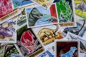 Dünya pulları: dinozorlar — Stok fotoğraf