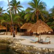 Tropical Resort in Morning Light - Stok fotoğraf