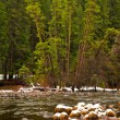 Merced River Winter Scene - Stock Photo