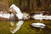 雪の覆われた岩 — ストック写真