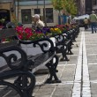 Simetrical string of benches in a market - Stock Photo