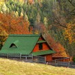 COTTAGE IN AUTUMN — Stock Photo #2234623