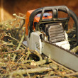 Chainsaw — Stock Photo #2025153
