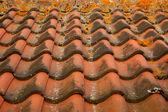 Dachówki ceramiczne — Zdjęcie stockowe
