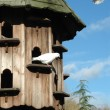 Royalty-Free Stock Photo: Dovecote