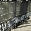 Shopping carts — Stock Photo #2103051