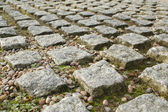 Block paving — Stock Photo