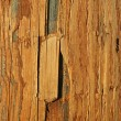 Stock Photo: Weathered wood