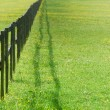 Stock Photo: Fence perspective