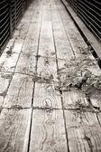 Rickety bridge — Stock Photo