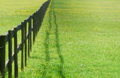 Fence perspective — Stock Photo