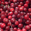 Stock Photo: Cranberry texture
