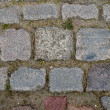 Cobblestone path texture — Stock Photo