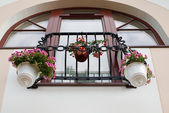 French balcony with flowers — Stock Photo