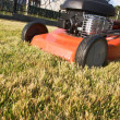 Gasoline powered lawnmower — Stock Photo #2202838