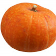 Pumpkin on white - Stock Photo