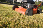 Gasoline powered lawnmower — Stock Photo