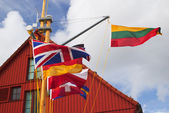 Flags in Klaipeda yacht harbor — Stok fotoğraf