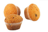 Muffins on white — Stock Photo