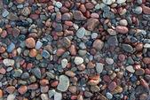 Wet pebbles — Stock Photo
