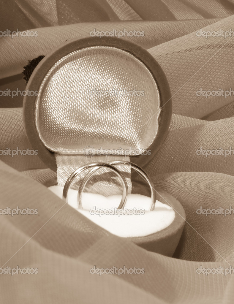 Engagement rings in a box   Stock Photo #2009832