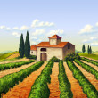 Italian vineyard - Foto Stock