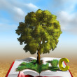 Knowledge tree — Stock Photo