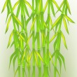 Stock Vector: Bamboo